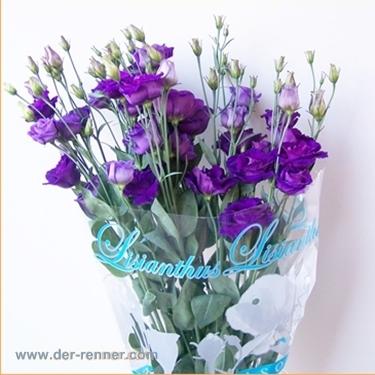 lisianthus in violett vom blumenversand der renner blumen f r hotel dekoration hochzeiten. Black Bedroom Furniture Sets. Home Design Ideas