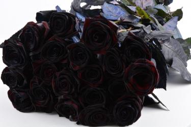 gef rbte schwarze rosen 20 st ck blumen f r hotel dekoration hochzeiten direkt vom. Black Bedroom Furniture Sets. Home Design Ideas