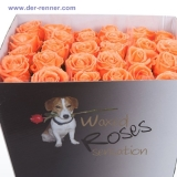 gewachste rosen waxed roses in vielen farben aus holland. Black Bedroom Furniture Sets. Home Design Ideas