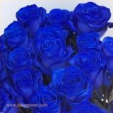 Blaue Rose - Vendela Blue VE 20 St.